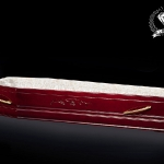 VIP casket «Tyulpan»
